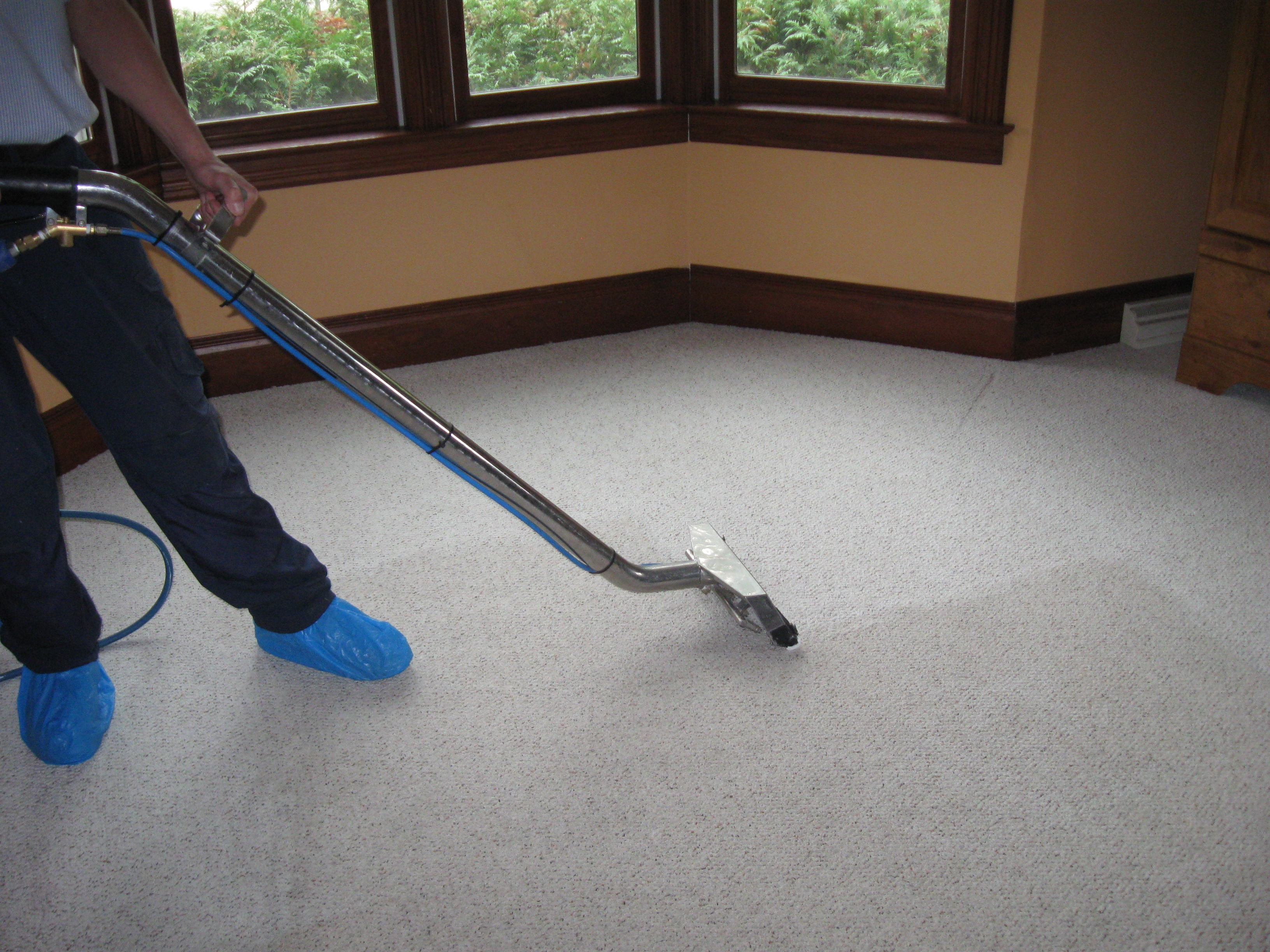 The Importance Of Hiring Professional Carpet Cleaning